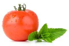 Tomato and mint Stock Photos