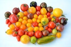 Tomato mix colors Royalty Free Stock Photos