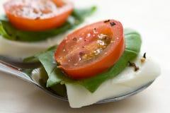 Tomato Mozzarella Royalty Free Stock Images