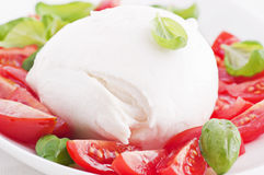 Tomato Mozzarella Royalty Free Stock Images