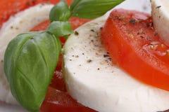 Tomato and mozzarella Royalty Free Stock Image