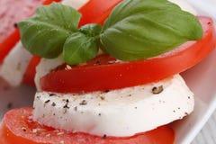 Tomato and mozzarella Royalty Free Stock Photos