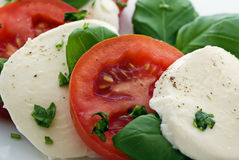 Tomato Mozzarella Stock Images