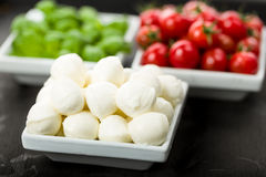 Tomato Mozzarella Basil Royalty Free Stock Photography