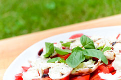 Tomato, mozzarella and basil salad Stock Photos