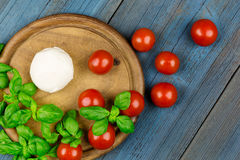 Tomato mozzarella basil wood Stock Photography