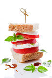 Tomato And Mozzarella Burger. Close up photograph of some fresh tomato with mozzarella Stock Photography