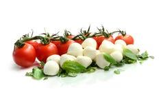 Tomato and Mozzarella II. Studio macro of ripe tomatoes and mozzarella balls garnished with chopped basil. Copy space stock image