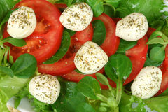 Tomato, mozzarella, lettuce Royalty Free Stock Photography