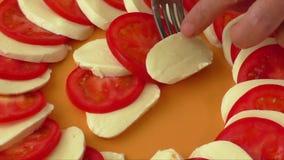 Tomato and mozzarella stock video