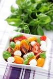 Tomato and mozzarella salad Royalty Free Stock Photo