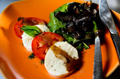 Tomato mozzarella salad close up Stock Photos