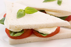 Tomato Mozzarella sandwich Royalty Free Stock Photos