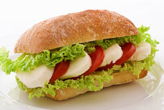 Tomato Mozzarella Sandwich Stock Images