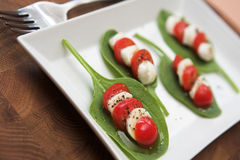 Tomato, mozzarella & spinach salad Royalty Free Stock Image
