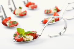 Tomato-mozzarella on spoon Stock Image