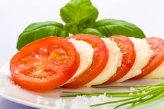 Tomato mozzarella Royalty Free Stock Photos