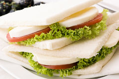 Tomato Mozzarella Tramezzini Royalty Free Stock Photo