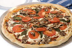 Tomato, Mushroom and Basil Homemade Pizza on White Stock Photo