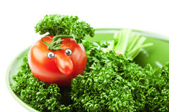 Tomato with a nose Royalty Free Stock Images