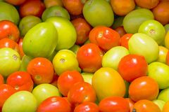 Fresh tomato, red and green, at the supermarket shelf. stock photo
