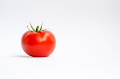 Tomato. One single tomato, on a white background Royalty Free Stock Images