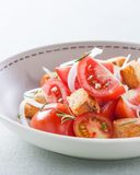 Tomato, onion and fresh herbs Royalty Free Stock Images