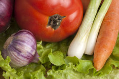 Tomato, onion, garlic and carrots on lettuce leaves. Close up Stock Images