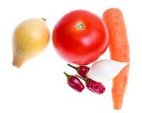 Tomato, onion, garlic, chilli, carrot Royalty Free Stock Photo