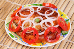 Tomato and onion pizza Royalty Free Stock Photography