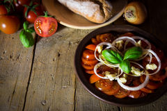 Tomato and onion salad with rustic bread on a old wooden table Stock Images