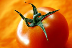 Tomato on orange background. Fresh tomato on orange background royalty free stock image