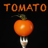Tomato orange Royalty Free Stock Images