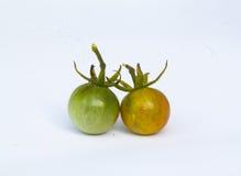 Tomato. Orange and green tomato on background Royalty Free Stock Images