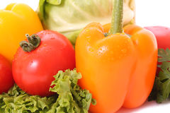 Tomato and orange pepper Stock Photography