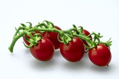 Tomato. Organic red tomato on a white background Stock Image