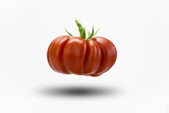 Tomato. Organic red tomato on a white background Stock Photography