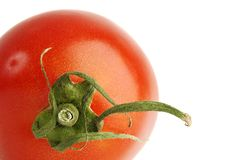 Tomato over white. Close up of Tomato over white Royalty Free Stock Images