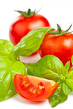 Tomato of Pachino and basil Royalty Free Stock Image