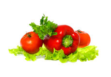 Tomato and paprika. On white background Royalty Free Stock Photo