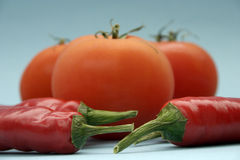 Tomato and paprika. On blue background royalty free stock image