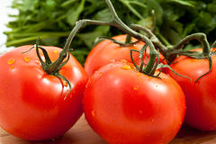 Tomato with parsely Stock Photo