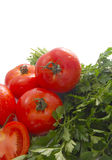 Tomato and Parsley Stock Photography