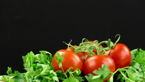 Tomato and Parsley. And Black Background stock video