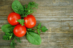 Tomato, parsley, dill and spinach Stock Photography