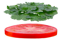 Tomato and parsley herb round Royalty Free Stock Image