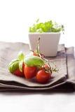 Tomato and Parsley on napkin Stock Photos