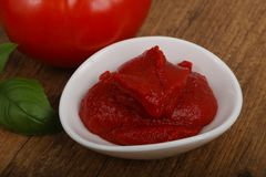 Tomato paste. With basil leaves Royalty Free Stock Photo