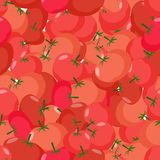 Tomato pattern. Seamless background with red tomatoes. Vector te Royalty Free Stock Photos