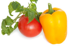Tomato and pepper. Red tomato and yellow pepper on a white background Royalty Free Stock Image